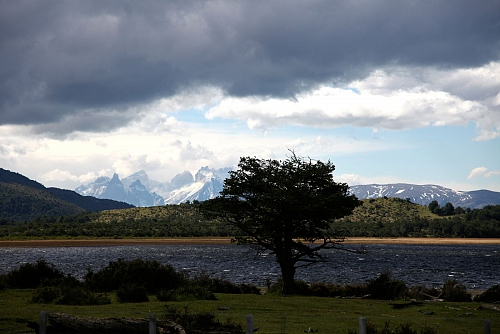 PATAGONIA : ARGENTINA & CHILE - © Doris Stricher